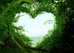 meilė sau