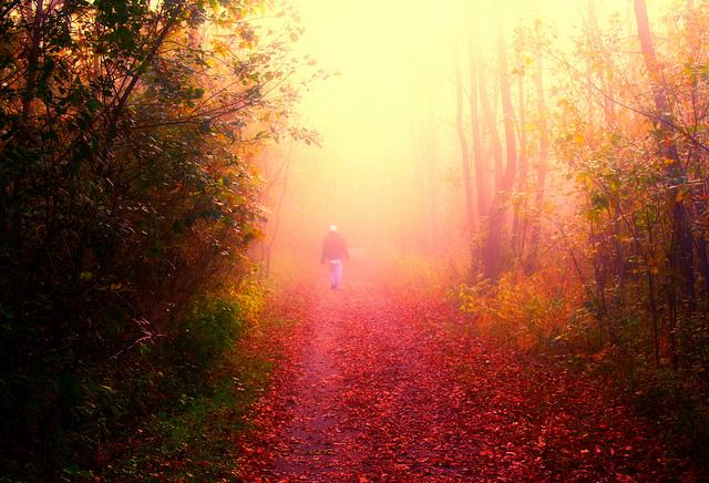 Kelias į niekur, kelias į save