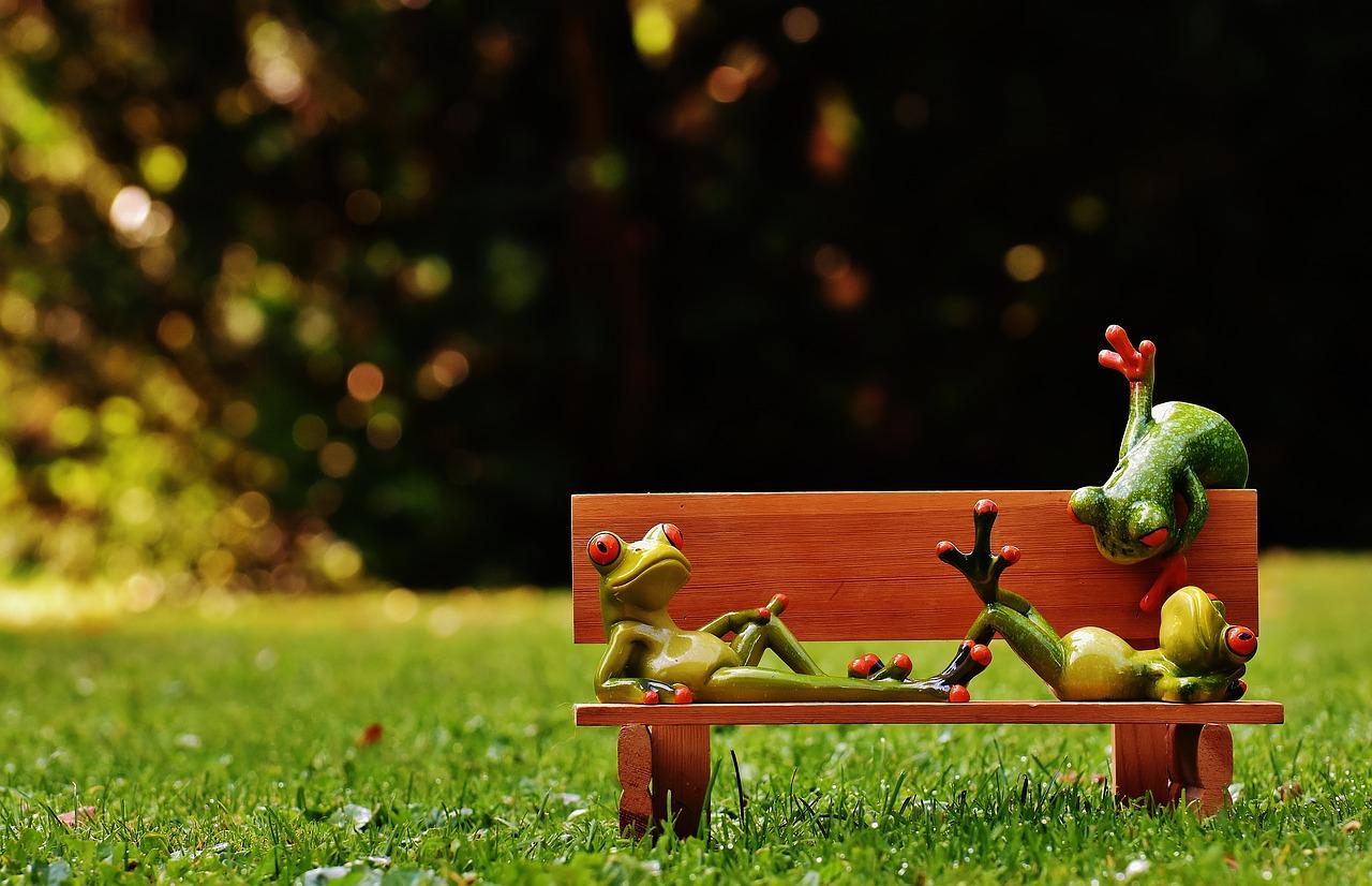 Zen habits. Kaip sulėtinti tempą ir labiau mėgautis gyvenimu: 10 esminių taisyklių