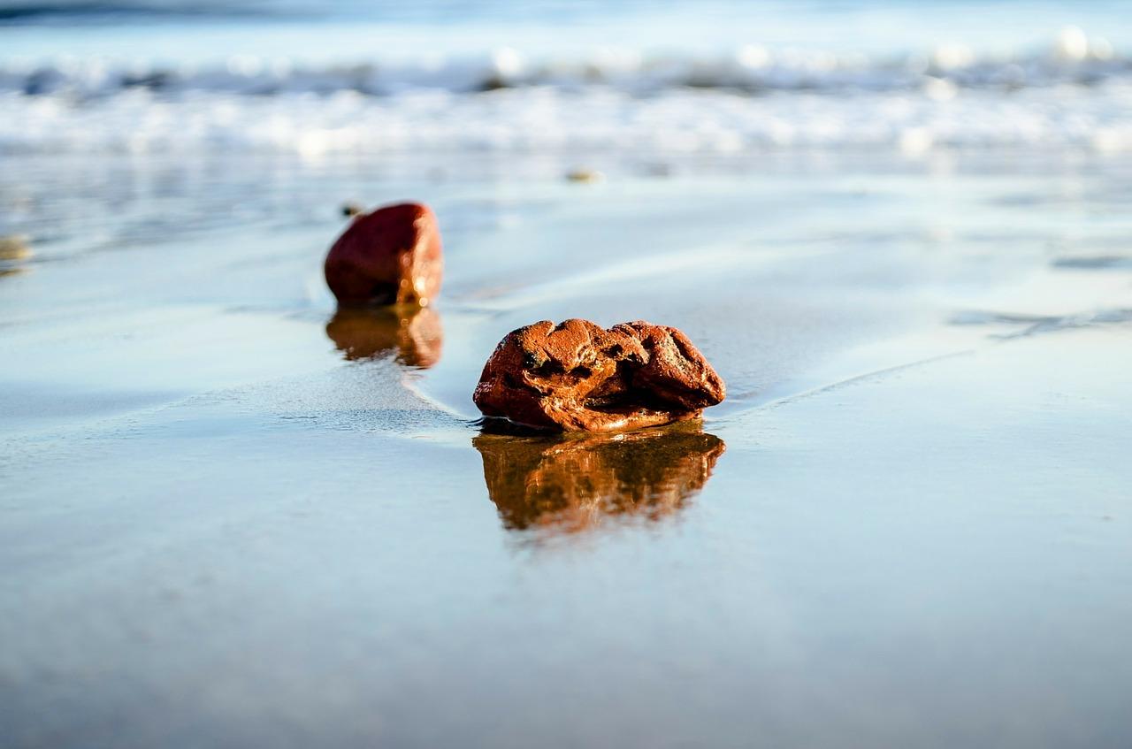 Zen habits. Sulėtinkite tempą ir pasimėgaukite gyvenimu